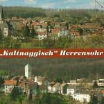Dieter Hartwich