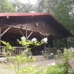 Jungholzhütte Die Waldwirtschaft